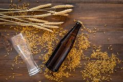 Подготавливать пиво Ячмень около пивной бутылки и стекла на деревянном взгляд сверху предпосылки Стоковое фото RF