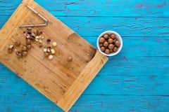 Подготавливать свежие гайки макадамии для еды Стоковые Изображения RF