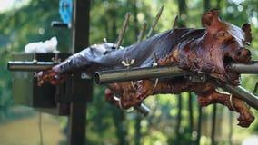 Подготовка всей свиньи на вертеле Жарка свиньи на углях Еда в свежем воздухе акции видеоматериалы