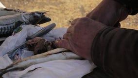 Подготовка для куря рыб или жарить Варящ скумбрию на открытом воздухе Рыбы вырезывания сток-видео