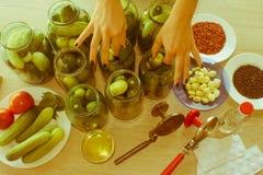 Подготовка для маринуя огурцов консервация стоковая фотография