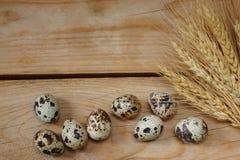 Подготовка для пасхи, яичек и колосков пшеницы Стоковые Фотографии RF