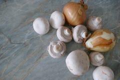 Подготовка еды гриба с луком и сливк Стоковые Фотографии RF
