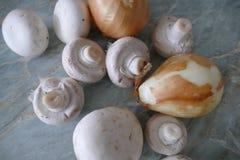 Подготовка еды гриба с луком и сливк Стоковое Изображение RF