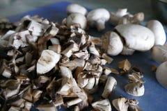 Подготовка еды гриба с луком и сливк Стоковые Фото