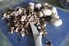 Подготовка еды гриба с луком и сливк Стоковое фото RF