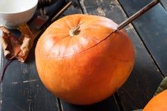 Подготовка ножа тыквы взгляда к хеллоуину Стоковые Фотографии RF