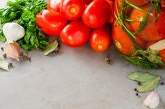 Подготовка marinated томаты консервации с травами, чесноком, солью, и специей стоковые фото