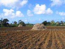 подготовленная почва стоковые фотографии rf