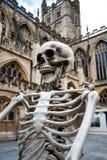 Поддельный скелет представленный вне собора ванны стоковая фотография rf