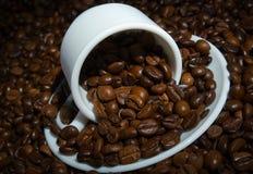 поддонник вороха s кофейной чашки фасоли Стоковое Изображение