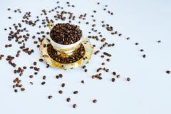 поддонник кофейной чашки фасолей Стоковые Фотографии RF