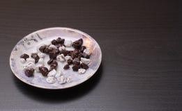Поддонник с частями шоколада Стоковые Изображения