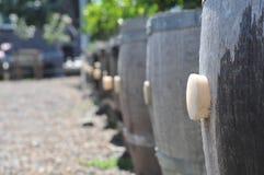 подействуйте по мере того как бочонки cork рядок плантаторов Стоковые Фото