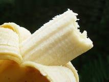поднимающее вверх банана близкое Стоковые Фото