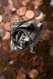 поднимающее вверх доллара розовое Стоковые Фотографии RF