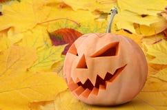 Поднимите голову домкратом ` s фонарика высекаенного от тыквы на хеллоуин стоковое изображение