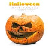 Поднимите фонарик домкратом на хеллоуин сделал из тухлой тыквы Стоковое фото RF