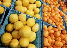Подносы цитрусовых фруктов, кумкватов & limequats клали вне для продажи на стоковое фото rf