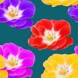 Поднял, розовый цветок, Безшовная текстура картины цветков флористическо иллюстрация вектора