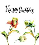 Поднял, тюльпан и Narcissus цветет с с названием с днем рождения бесплатная иллюстрация