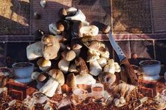 Подосиновик плюшки Пенни edulis на таблице Стоковое фото RF
