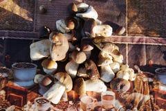 Подосиновик плюшки Пенни edulis на таблице Стоковые Изображения