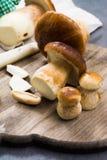 Подосиновик edulis, cepe, грибы porcini помыл на сером бетоне Стоковые Фотографии RF