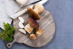 Подосиновик edulis, cepe, грибы porcini помыл на сером бетоне Стоковая Фотография RF