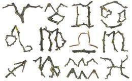 подписывает зодиак символов Стоковое Изображение RF