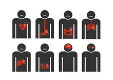 Подпишите человека с сердцем, печенью, гастрический, кишечной, конспектом болезни легких на белой предпосылке Стоковые Изображения RF