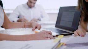 Подрежьте сотрудников в современном офисе занятом с обработкой документов пока сотрудничающ видеоматериал