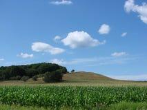 подрезывает лето неба Стоковое фото RF