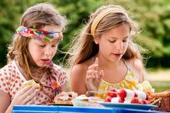 подросток picknick стоковые фотографии rf