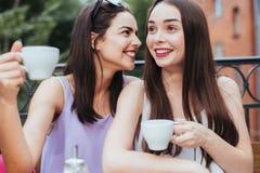 Подруги сидят в кофе и выпивая чае Стоковое фото RF