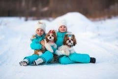 Подруги с их любимчиками идут на прогулку Стоковые Фотографии RF