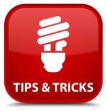 Подсказки и кнопка красной площади фокусов (значка шарика) специальная бесплатная иллюстрация