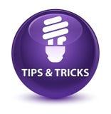 Подсказки и кнопка фокусов (значка шарика) стекловидная фиолетовая круглая бесплатная иллюстрация