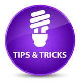 Подсказки и кнопка фокусов (значка шарика) элегантная фиолетовая круглая иллюстрация вектора