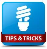 Подсказки и лента i cyan голубой квадратной кнопки фокусов (значка шарика) красная бесплатная иллюстрация