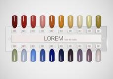 подсказки Комплект ложных ногтей для маникюра Цветовая палитра политуры для расширения ногтя Искусственные ногти на прозрачное ос иллюстрация вектора