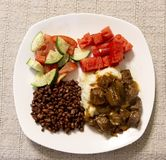 Подсказки, подливка и овощи говядины Стоковые Изображения