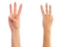 подсчитывать женские руки Стоковые Изображения