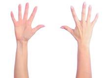 подсчитывать женские руки Стоковое Изображение