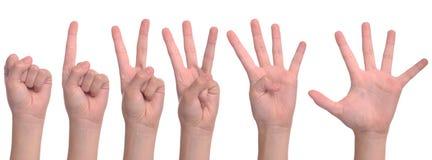 подсчитывать женщину рук Стоковые Фотографии RF