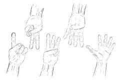 Подсчитывая или голосуя рука, одно до 5 изолированная на белизне Стоковые Фотографии RF