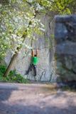 Подъемы альпиниста на утесе Стоковое фото RF