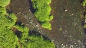 Подъем выше река в летнем дне сток-видео