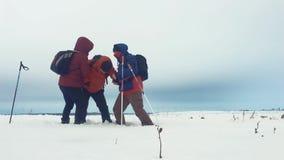 Подъем товарища по команде порции альпиниста, человек с рюкзаком достиг вне руку помощи к его другу 3 альпиниста на a сток-видео