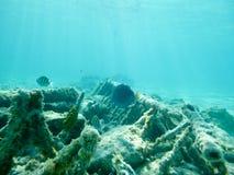 Под водой на частном острове стоковые изображения rf